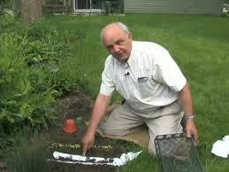 72 best gardening videos images on pinterest gardening tips