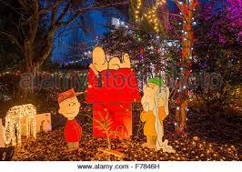 charlie brown christmas lights charlie brown christmas light display park and tilford gardens n