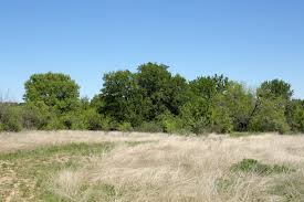 30 acres land for sale brownwood tx brown county u2013 land for sale