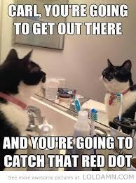 Meme Carl - carl you re going cat meme cat planet cat planet