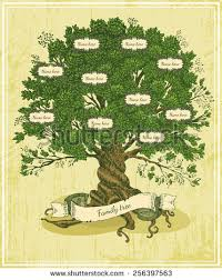 family tree stock images royalty free images u0026 vectors shutterstock