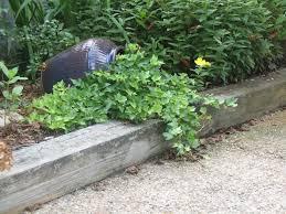 border ideas for gardens easyflex no dig edging rock garden lawn