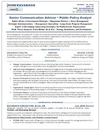 resume samples consultant government