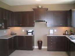 Espresso Kitchen Cabinets With Granite Amazing Espresso Kitchen Cabinets Escorted By Gray Mosaic Granite