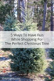 5 ways to build memories at the christmas tree farm