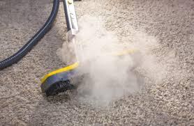 best carpet steamer the best carpet steamer for your floor