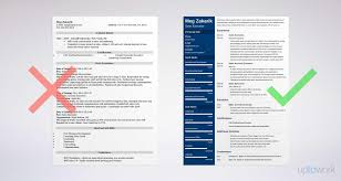 business resume exles executive resume sle and complete guide 20 exles