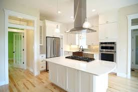 Styles Of Kitchen Cabinet Doors Cabinet Door Styles Pictures Here Are The Most Popular Kitchen