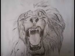 drawing of a lion pencil youtube