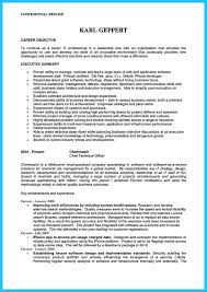 resume summary samples for it professionals outstanding cto resume for professionals how to write a resume outstanding cto resume for professionals image name