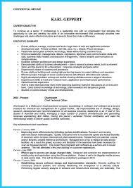 Cio Sample Resume Cto Resume Examples Managment Resume Sample 2 Resume Secrets For