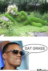 Grass Memes - dat grass by robotzombie13 meme center