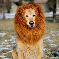 lion dogs 6miles 1 pcs brown lion mane wig for dog and cat