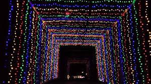 yogi bear christmas lights christmas lights at jellystone youtube