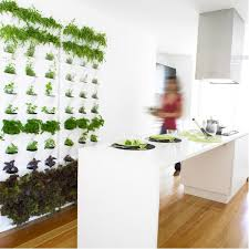 minigarden wall planter herbs growing right there in your