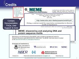 Meme Suite - copyright openhelix no use or reproduction without express written