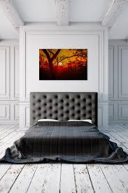 savannah sunrise rogue aurora photography