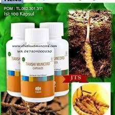 sedia obat kuat tradisional untuk kejantanan pria produk asli dari