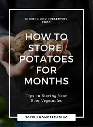 storing root vegetables tips on keeping your produce fresh for