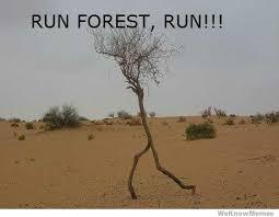 Run Forrest Run Meme - run forest run weknowmemes