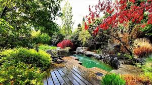 water leveling system of koi pond koi pond tips youtube