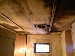 Insulation In Ceiling by 13 Best Ceiling Insulation Images On Pinterest Insulation