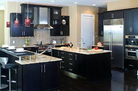 black cupboards kitchen ideas kitchen ideas with black cabinet black and copper kitchen ideas