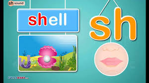 digraph sh sound phonics by turtlediary youtube