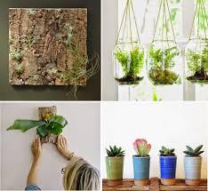 10 diy plant ideas for fall surfingbird мы делаем интернет лучше