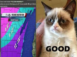 Good Grumpy Cat Meme - first attempt at grumpy cat meme imgur