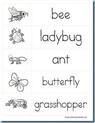 bugs theme emergent readers insects literacy