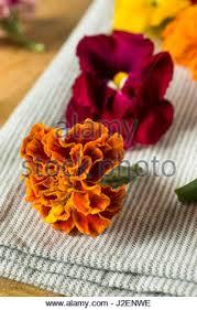 organic edible flowers organic edible flowers ready to eat stock photo royalty free