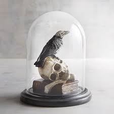 Skull Decorations For The Home Pier 1 Imports Skull U0026 Crow In Cloche Halloween Decor Halloween