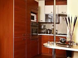 modern kitchen exterior beautiful modern home decor with dark