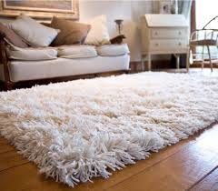 Shag Carpet Area Rugs White Fuzzy Area Rug Rugs Pinterest Room And Bedrooms