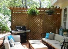 Backyard Privacy Screens by Backyards Ergonomic Backyard Privacy Ideas For Renters 55 Cheap