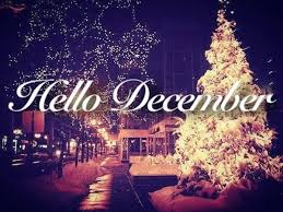 hello christmas tree hello december quote with christmas tree pictures photos and