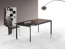 Modern Dining Table With Extension The Special Aspect Of The Extension Dining Table Lgilab Com
