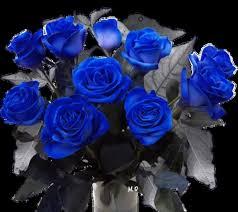 imagenes con flores azules dia de la maestra flotrd y rosas imagenes de tumbler buscar con google flores y