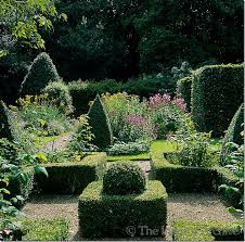 English Box Topiary - 460 best topiary images on pinterest topiary garden topiaries