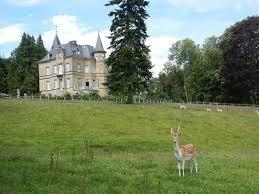 29 best castles for sale in belgium images on pinterest homes