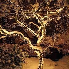 christmas lights to hang on outside tree exterior christmas lights rhinowindows info