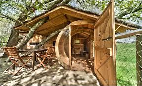 chambre dans un arbre photos de dihan cabanes hébergements insolites en morbihan