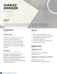 Best Resume Templates For Executives by Business Executive Resume Sample Free Resume Example And Writing