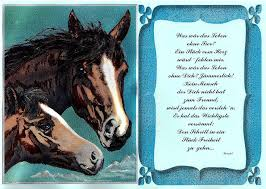 pferde spr che pferd alubild mit und ohne spruch wildpferd fohlen pony