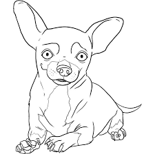 coloring pages chihuahua puppies pin by coloring fun on dogs pinterest dog rules sketches and dog