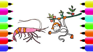 how to draw monkey shrimp coloring pages for kids nursery