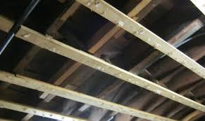 wondrous ideas best ceiling fans image of lowes ceiling fans best