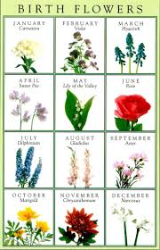 date of birth tattoo best 20 birth flowers ideas on pinterest birth month meanings