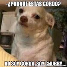 Chubby Meme - porque estas gordo no soy gordo soy chubby meme de perro
